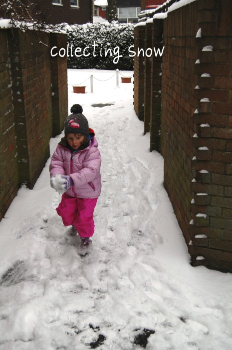 collecting snow