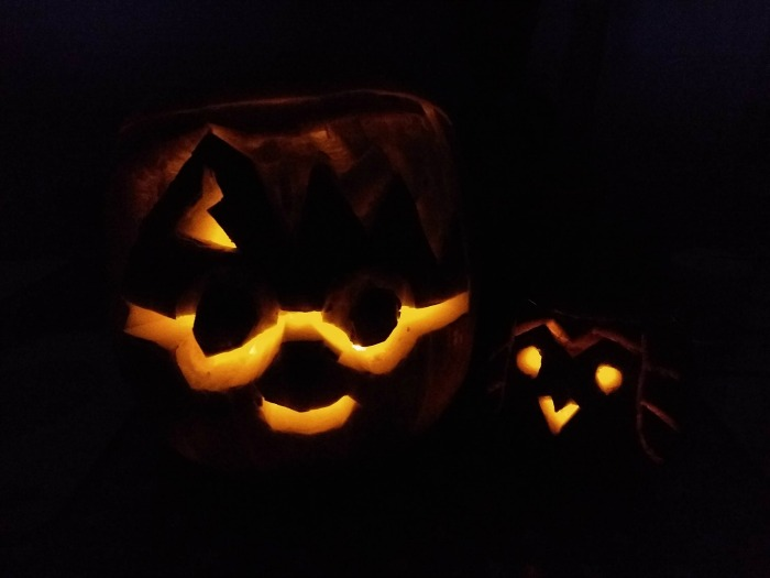 Harry and Hedwig pumpkins